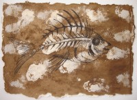 Ink drawing of fossil fish
